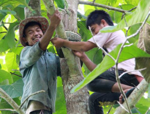Improving Sustainability Through Agroecology