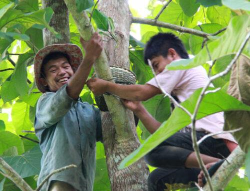 Bessere Nachhaltigkeit dank Agrarökologie