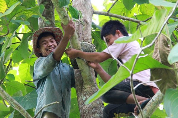 childsdream_newsletter_december_2020_4_HE_Improving-Sustainability-Through-Agroecology